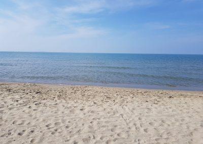 spiaggia-calambrone16