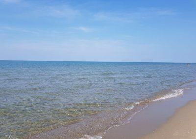 spiaggia-calambrone19