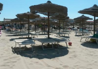 spiaggia-calambrone2