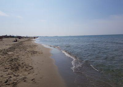 spiaggia-calambrone20