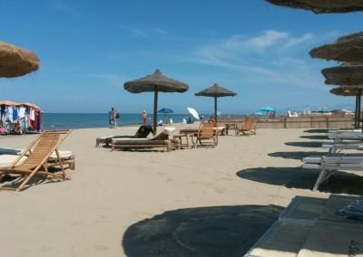 spiaggia-calambrone4