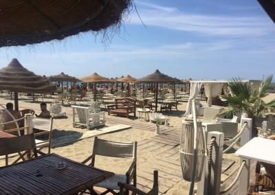 spiaggia-calambrone5