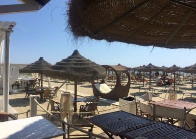 spiaggia-calambrone6