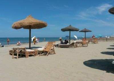 spiaggia-calambrone1
