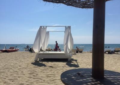 spiaggia-calambrone14