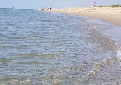 spiaggia-calambrone18